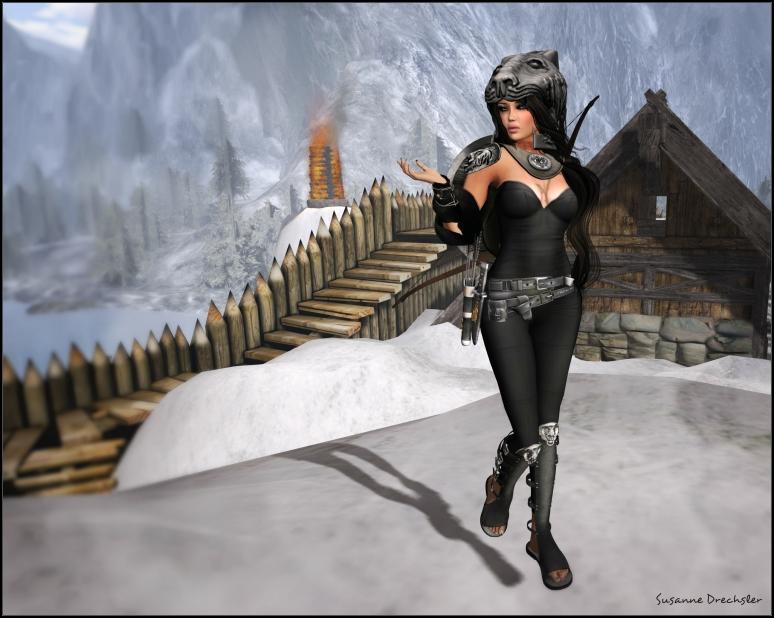 Tigris Armor 5_01